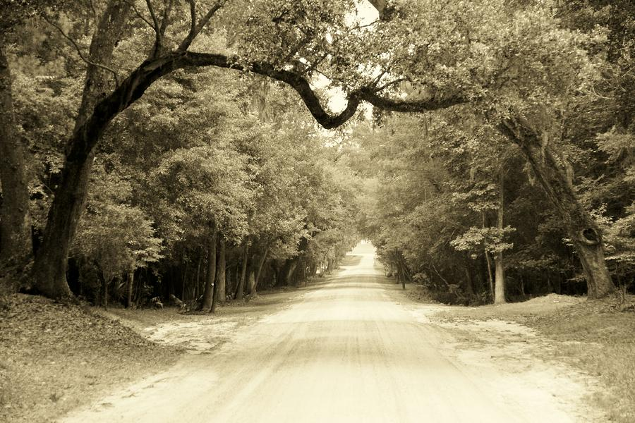 dirt-road-home-sean-cupp