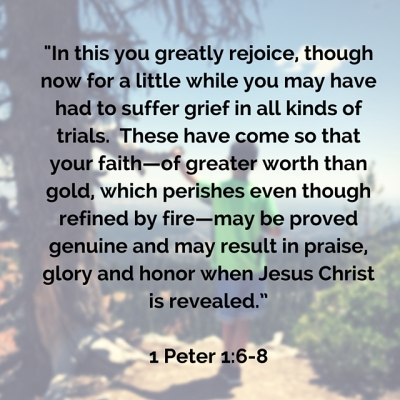 1 Pet 1-6-8- In this you greatly rejoice, though now for a little while you may have had to suffer grief in all kinds of trials. These have come so that your faith—of greater worth than gold, which perishes even though refined by fire (1)